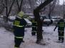 2014_12_02-stromy Prerov