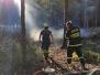 2020_08_25_pozar lesa ve Veseilcku